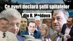 The Assets of the Hospital Directors in Moldova