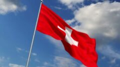 Embassy of Switzerland: We salute the parliamentary elections and Parliament's decision must be respected