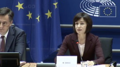 Members of the European Parliament Strongly Support the Efforts of Moldova's Prime Minister
