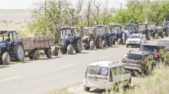 The Drought Pushed the Farmers to Protests, Asking the Authorities to Support the Agriculture Sector