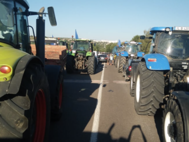 Moldova's Government Allocated €5.07 Million More to the Farmers Affected by the Drought