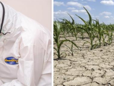Report: COVID-19 and 2020 Drought Leave Moldova on the Brink of Severe Economic Recession