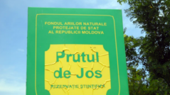 The Government has Approved the Regulations for the Operation of the Prutul de Jos Biosphere Reserve: It Contributes to the Protection of Flora and Fauna