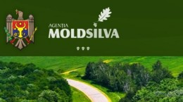 moldsilva