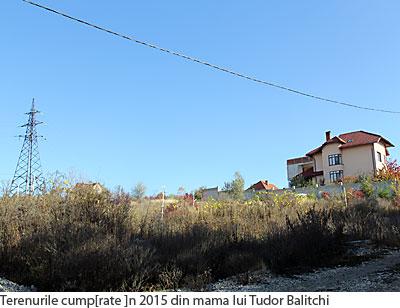 541-terenuri-mama-balitchi