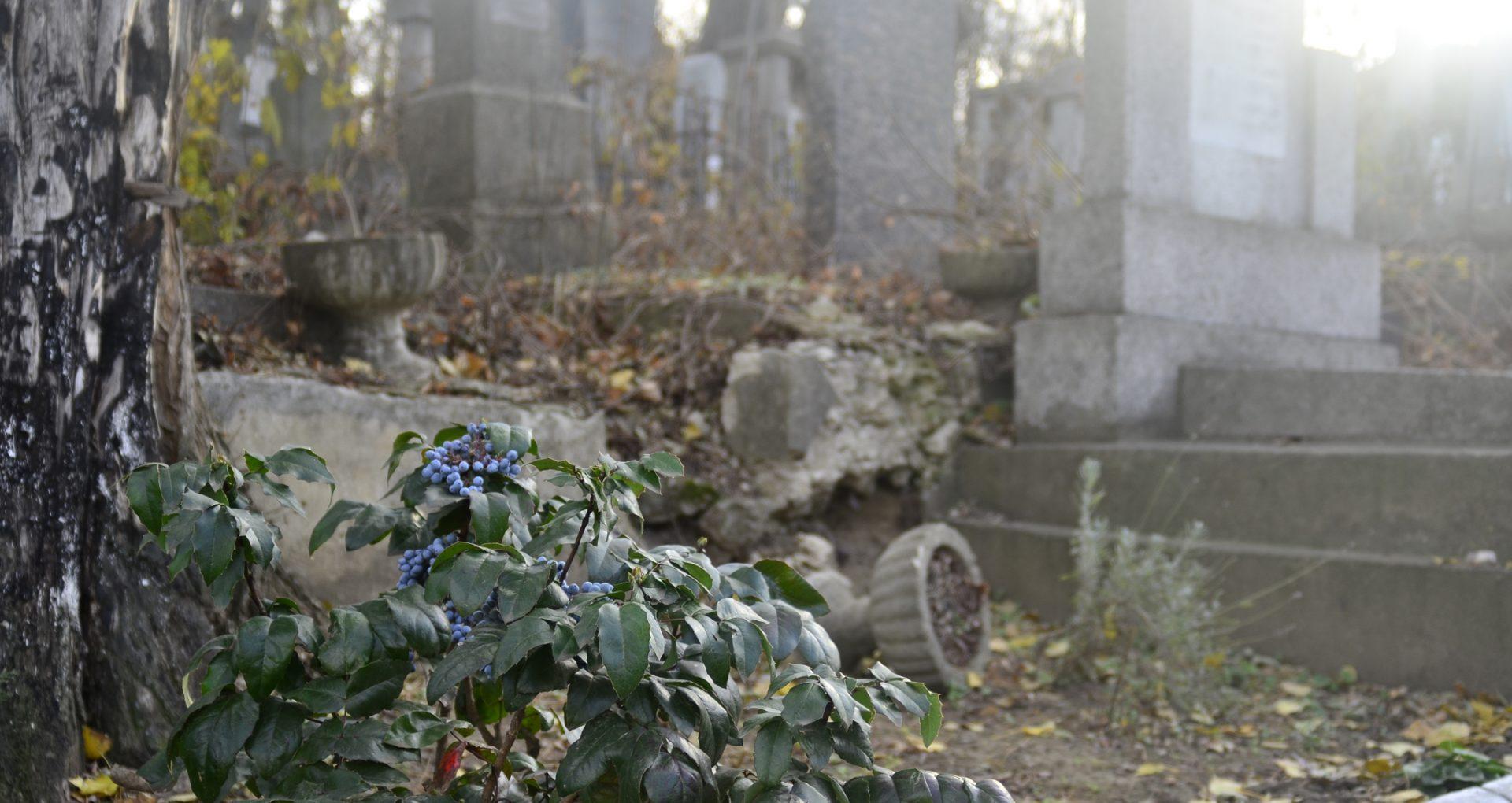Parlamentul a decis. Sancțiunile pentru profanarea mormintelor vor fi înăsprite