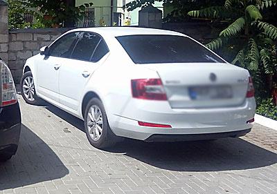 574-masina-betisor2