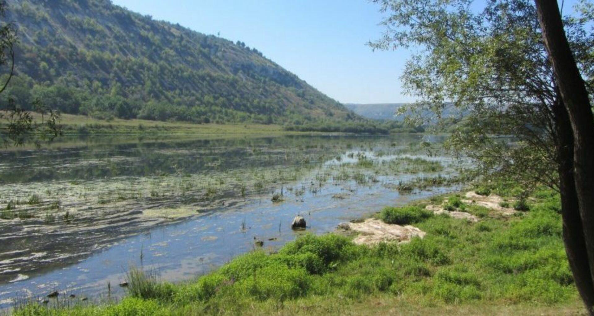 Hidrocentrale pe Nistru: Comisia creată de Guvern nu garantează protecţia râului