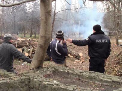 (VIDEO) Defrișări suspecte la Moldexpo. Crengile sunt arse în spațiul public