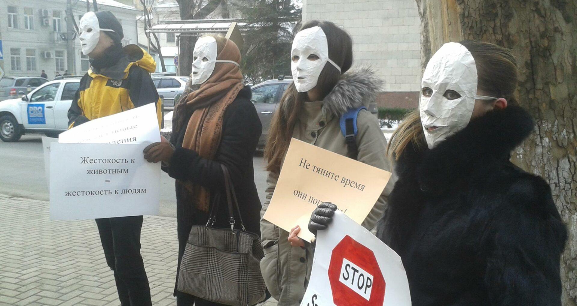 """(VIDEO) Protestatarii au intrat în clădirea Ministerului Justiției: """"Treziți-vă!"""""""