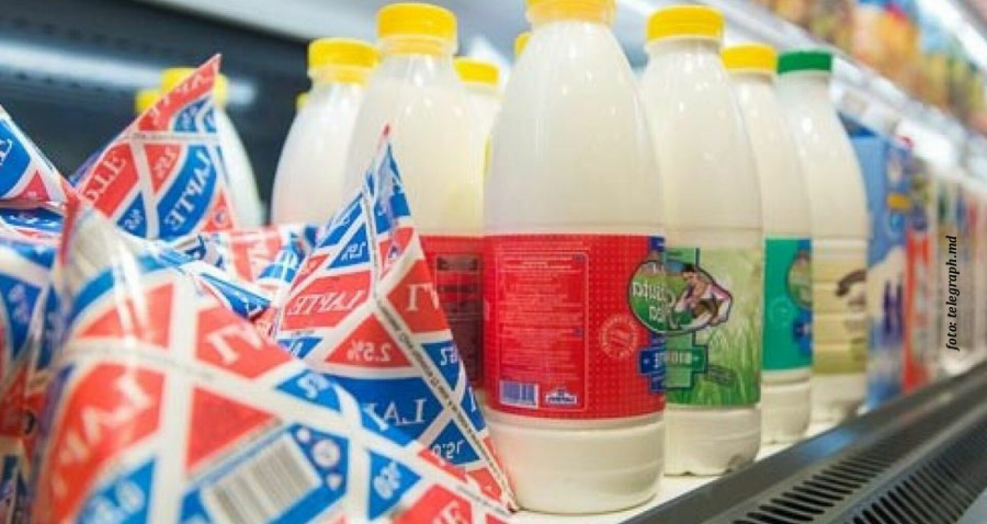 Stăpânii laptelui. Oamenii care gestionează cei mai mari producători de lactate din R. Moldova