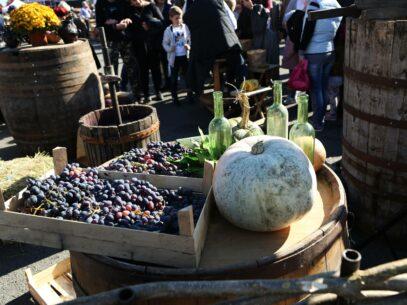 FOTOREPORTAJ/ Vin și voie bună de Ziua Națională a Vinului