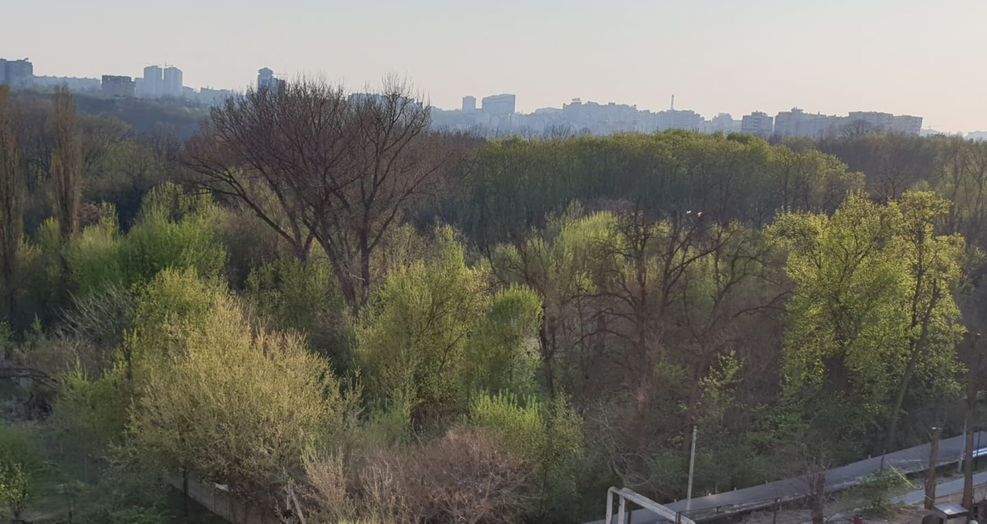 Pe timp de pandemie: Copaci defrișați ilegal și teren privat din interiorul parcului Valea Trandafirilor – îngrădit. În februarie, o companie de construcții a cumpărat terenul de la o fostă companie de asigurări