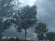 Cod galben de vânt puternic pe întreg teritoriul R. Moldova. Recomandările specialiștilor