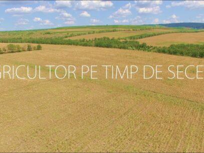 Agricultor pe timp de secetă