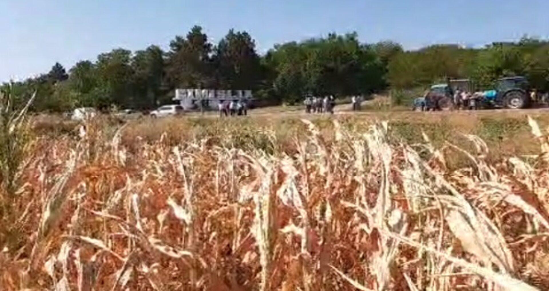 """Video/ Protest al agricultorilor la Cimișlia. Fermierii și-au adus și utilajele care îi ajută să-și câștige pâinea: """"Vindem și tractoare și tot ca să dăm datoriile"""""""