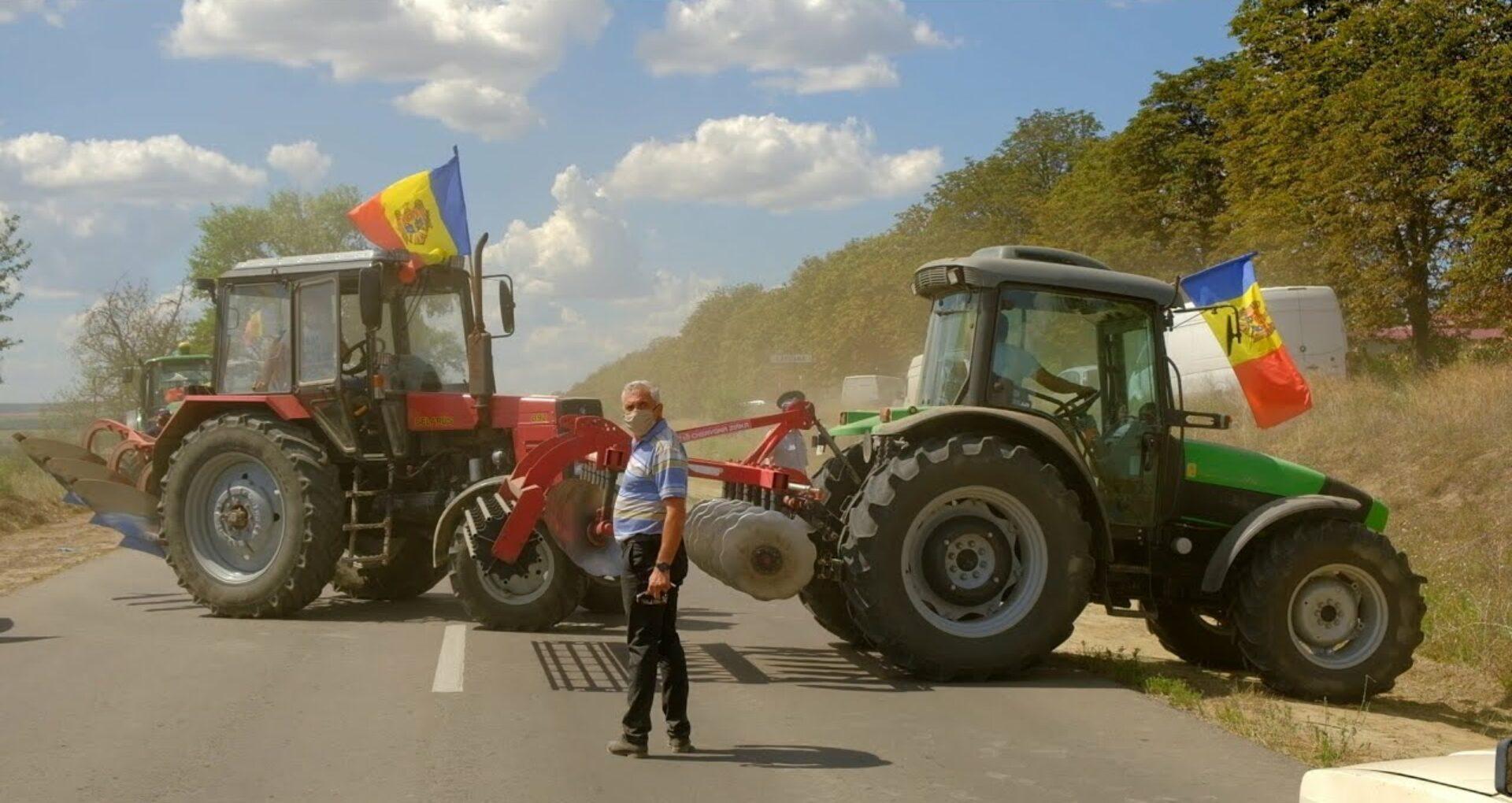 Guvernul va aloca încă 24 de milioane de lei drept compensații pentru agricultori