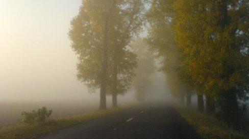 METEO/ Cod galben de ceață pe o mare parte din teritoriul R. Moldova