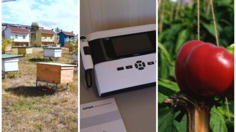 Turism, sănătate și agricultură. Cum au fost investiți banii oferiți de UE pentru localitățile rurale din R. Moldova