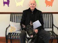 Joe Biden a alunecat în timp ce-și plimba câinele și are fracturi la oasele tălpii