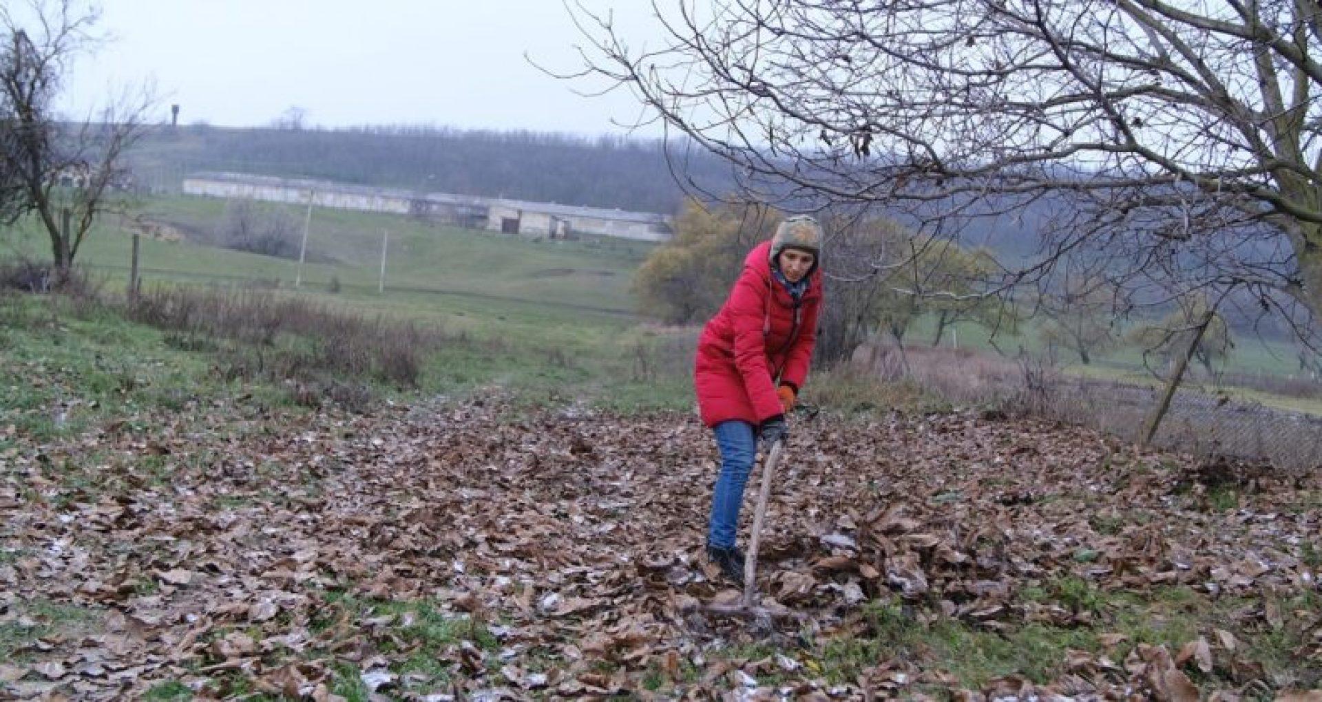 """Activiștii de mediu spun """"NU"""" arderii frunzelor: """"În natură, nimic nu este în surplus, nu distrugeți acest echilibru"""""""
