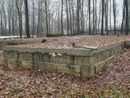 Betonul armat din Pădurea Durlești, turnat contrar condițiilor contractuale. Arbori tăiați ilegal, drum și gard neautorizat din beton – alte câteva nereguli