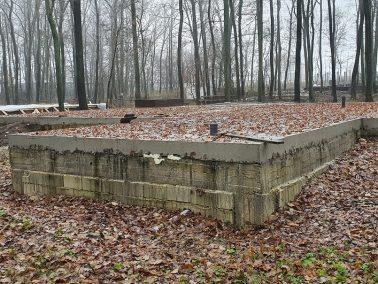 Beton armat în locul copacilor din Pădurea Durlești