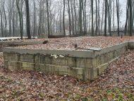 Fost ministru al Mediului, despre construcțiile din pădurea Durlești: Trebuie luat fiecare caz în parte până când nu va mai rămâne nici un gram de beton în pădure