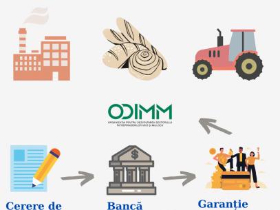 Cum poți aplica pentru o garanție financiară destinată ÎMM-lor afectate de criza pandemică COVID-19?