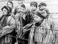 27 ianuarie- Ziua internațională de comemorare a victemelor Holocaustului