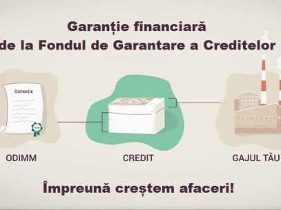 Ce este Fondul de Garantare a Creditelor și cine poate beneficia de garanții financiare?