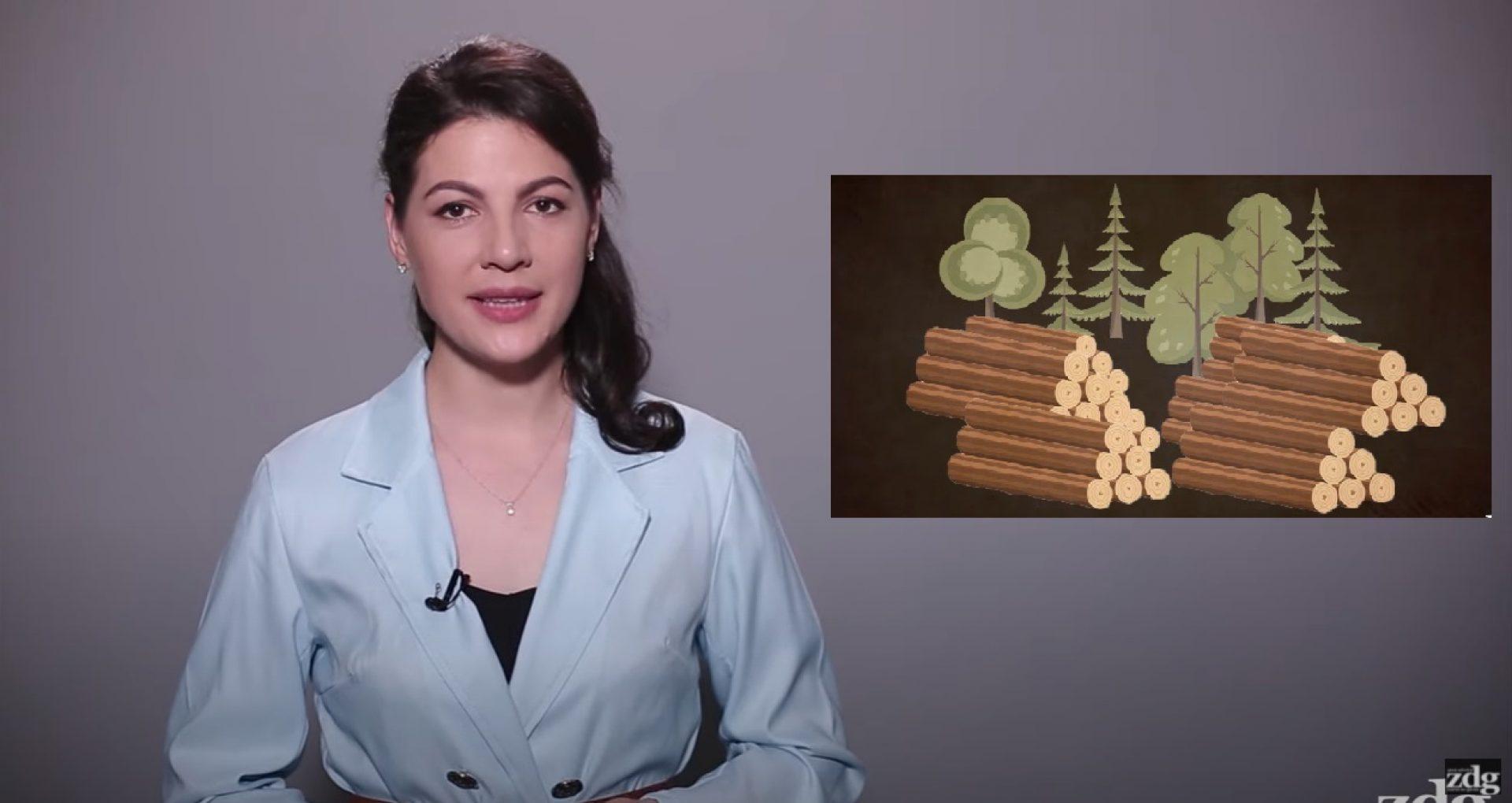 VIDEO/ Sinteza ZdG: Retrospectiva celor mai importante evenimente ale săptămânii. Ediția din 12 iunie 2021