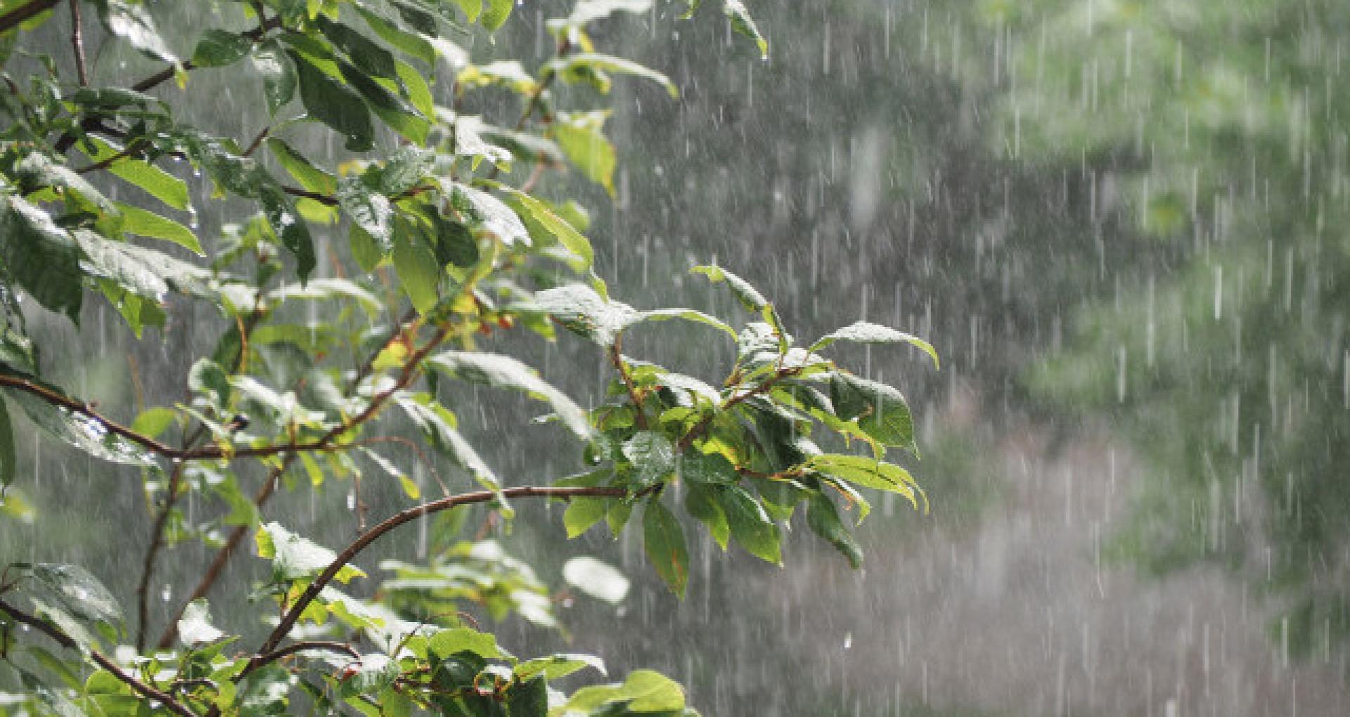 FOTO/ Ploile au făcut prejudicii în mai multe raioane din țară. IGSU: Au fost afectate culturi agricole