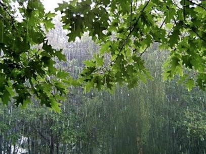 Vor mai fi două zile cu vreme de vară, apoi vin ploile cu descărcări electrice. Prognoza meteo