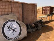 România anunță că va trimite militari în Africa de Vest. Decizia Bucureștiului, salutată de ministra franceză a Apărării