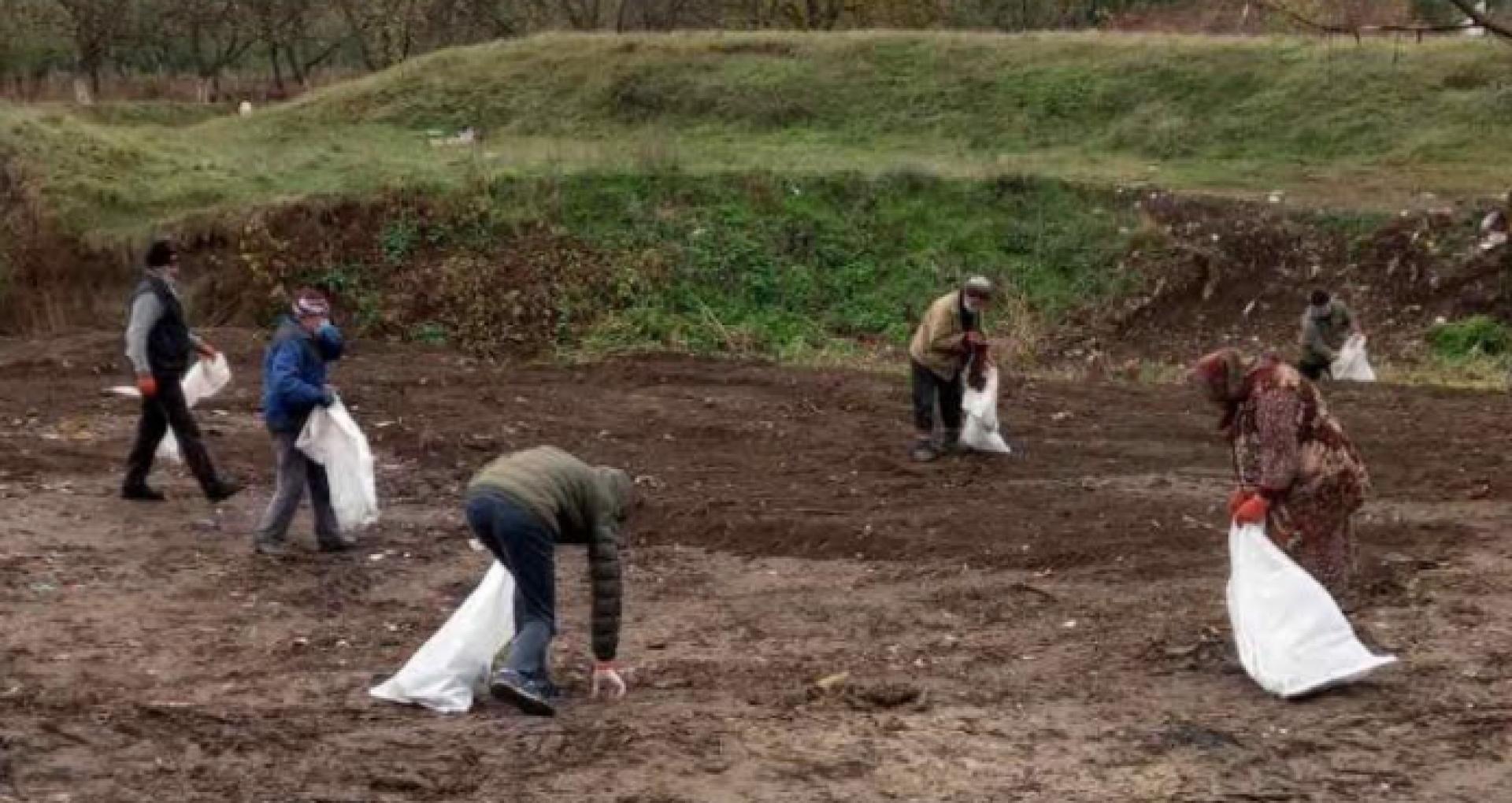 În loc de gunoiști neautorizate și miros urât, sătenii din Ciutești au instalat tomberoane și au plantat copaci